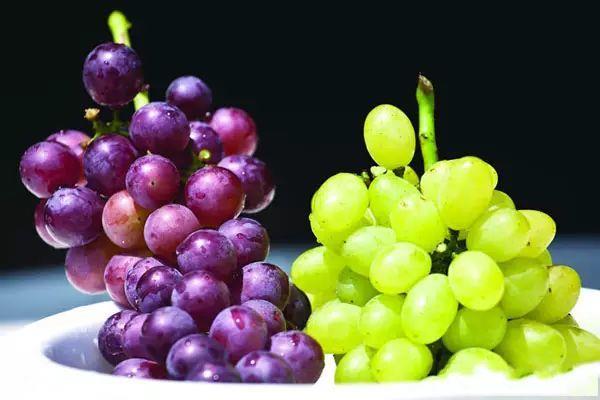 葡萄与提子之间有什么区别?